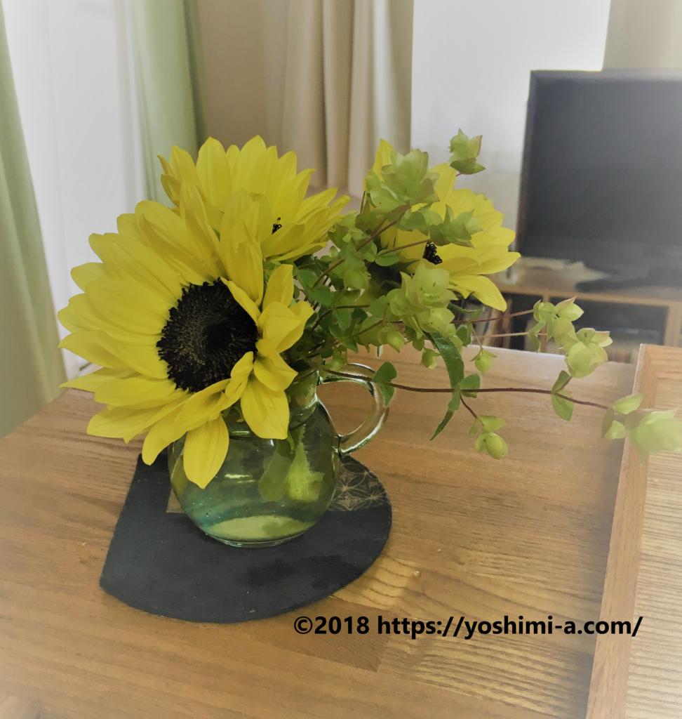 2018年6月の花
