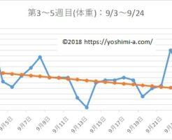 アラフォー38歳のダイエットブログPart2☆7月で-7kg!【第3~5週目】
