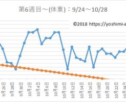 アラフォー38歳のダイエットブログPart2☆7月で-7kg!【第6週目~】