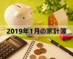 家計簿公開!アラフォー独女一人暮らしのお金【2019年1月】